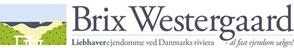 brix_westergaard